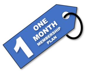 Creating Value 1 month membership plan